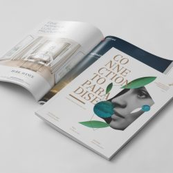 ParkAvenue-Immobilien-Magazin